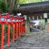 復縁パワーを高めてくれる近畿の恋愛神社8選
